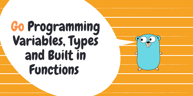 Go Programming Variables, Types and Built in Functions