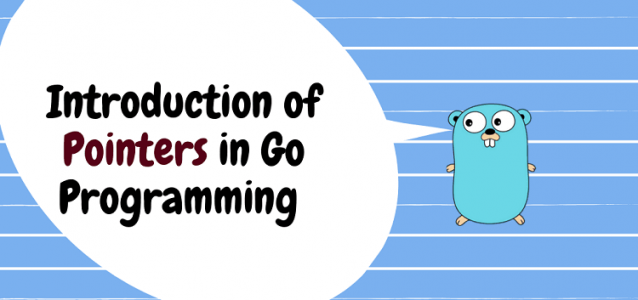 Introduction of Pointers in Go Language