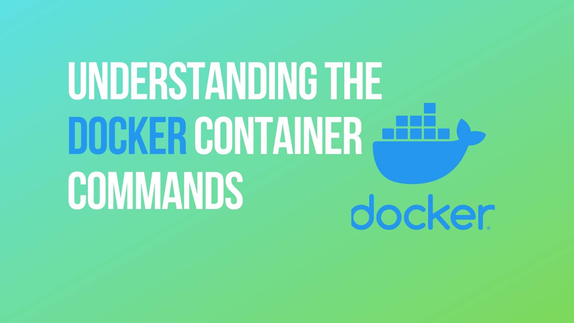 Understand the Docker Container Commands